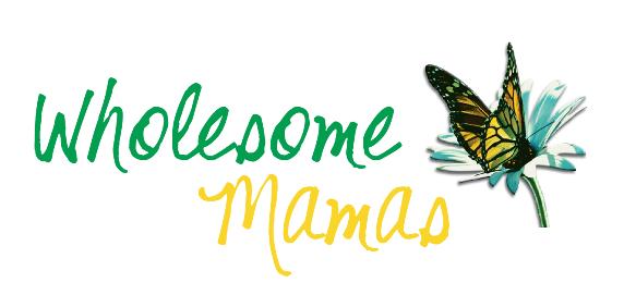 Wholesome Mamas lockup FINAL cropped 01