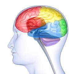 neurofeedback_NIHA