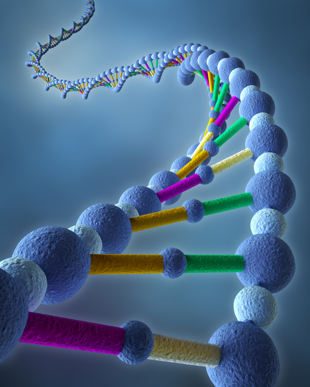 5 Genetic Tests You Should Get Now
