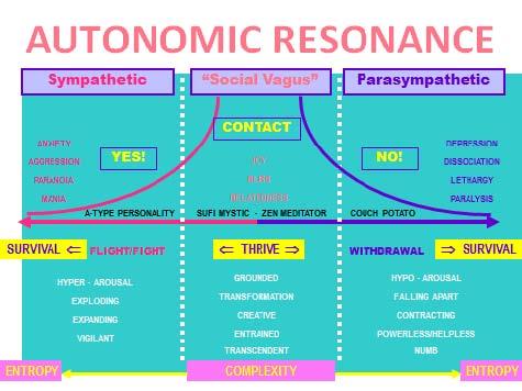 Kuno_autonomic_resonance.jpg