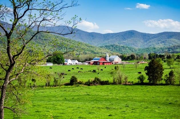 farm_AdobeStock_112840705