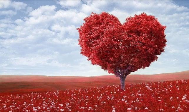 heart disease_holistic_mindfulness