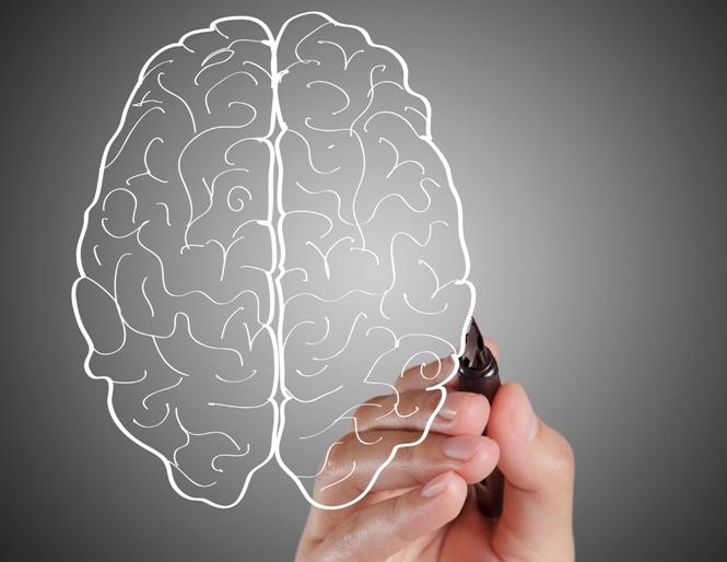 12 fatores de risco que afetam a função cerebral