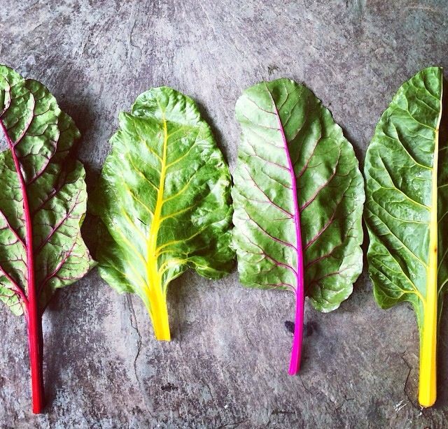 The Epigenetic Language of Food